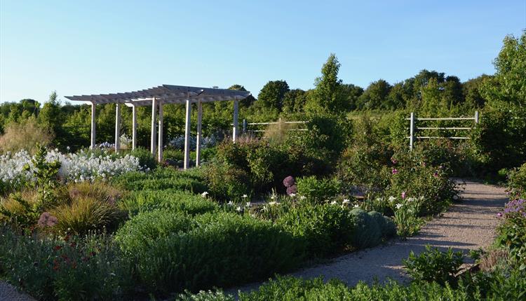 Sunny day in the garden at Keyneston Mill.