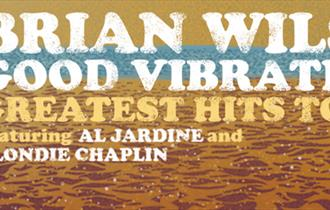 Brian Wilson Live