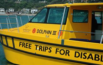 Dolphin III harbour trips for people with disabilities