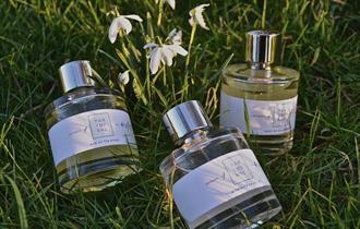 Parterre Perfumes