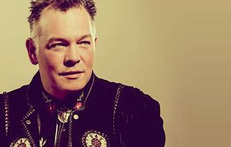 Comedian Stewart Lee in front of a bronze background.