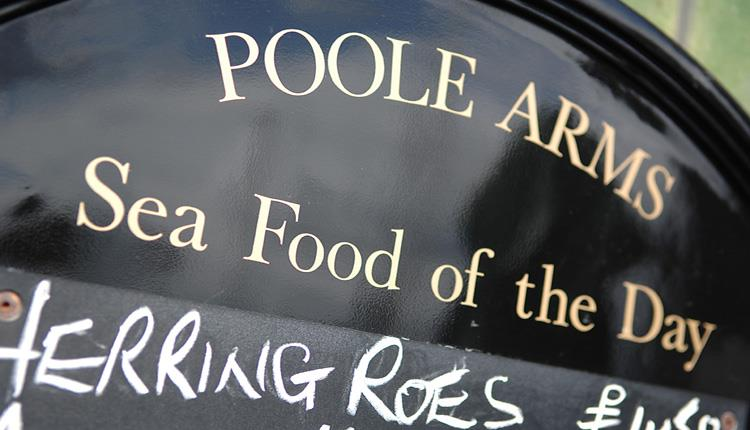 Poole Arm Sea Food of the Day