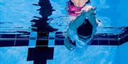Girl diving in at Eastney Pool
