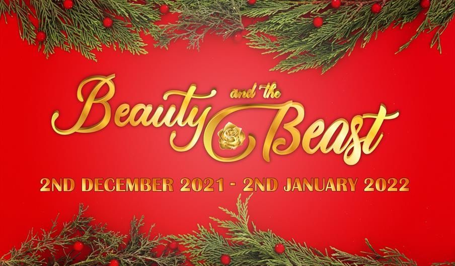 Poster image for Beauty and the Beast Panto
