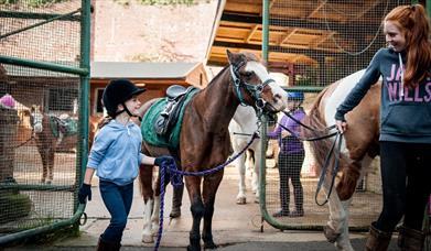 Children at Fort Widley Equestrian Centre