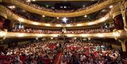Crowds of people taking to their seats inside the Kings Theatre