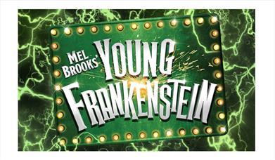 Illustration showing Young Frankenstein logo