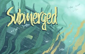 Illustration for Submerged at The Mary Rose