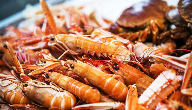 Find fresh seafood at the fish market every day.