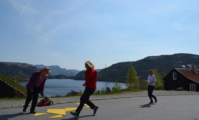 Teambuilding and meeting rooms at Preikestolen Mountain Lodge