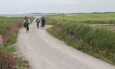 Jærruta is partly the same as North Sea Cycleroute.