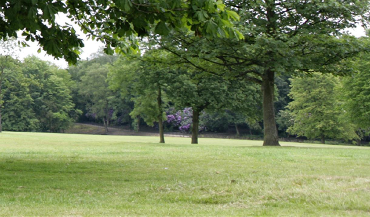 Hopwood Woods Nature Reserve