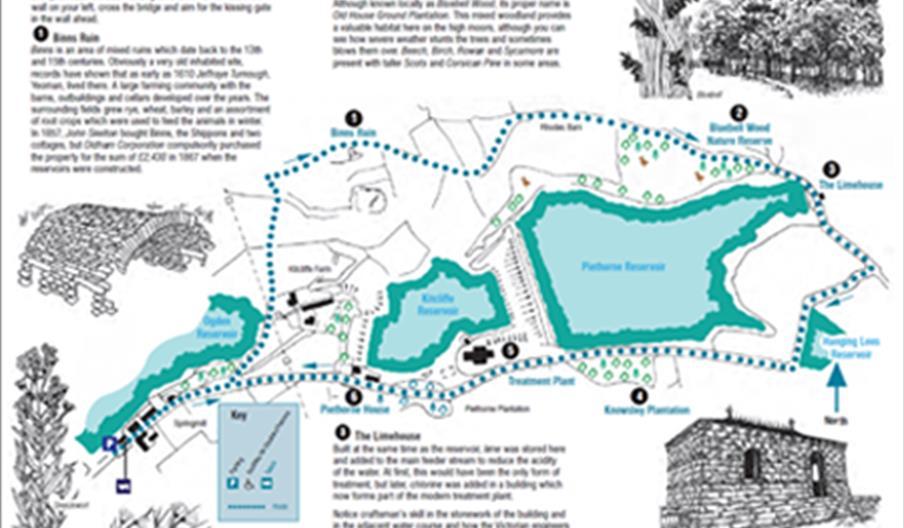 Bluebell Wood - A Piethorne Valley Walk