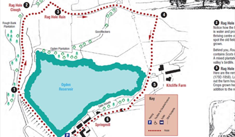 Map of the Kitcliffe Walk