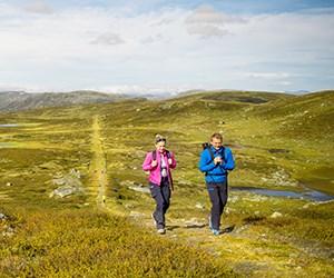 Durchblättern nach Aktivitäten in Lærdal