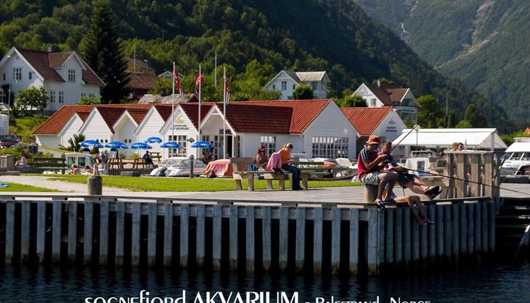 The Sognefjord Aquarium