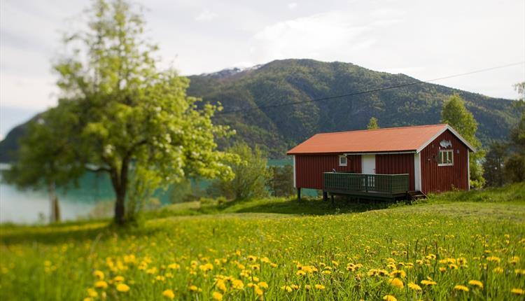 Dragsvik Cabins