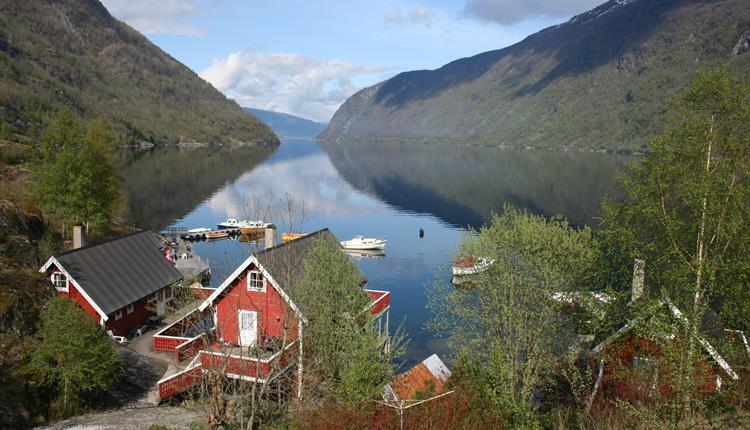 Arnafjord hytteutleige