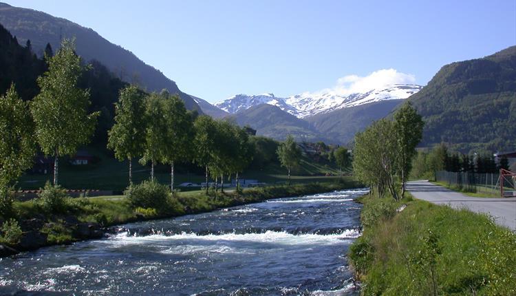 Vikja - salmon river