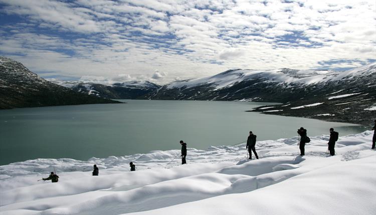 Austdalsbreen Glacier