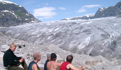 Tunsbergdalsbreen Glacier, Leirdalen / Luster
