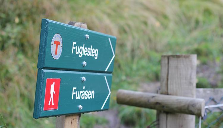 Retningskilt viser veg mot Furåsen, frå Fortun, Luster Kommune.
