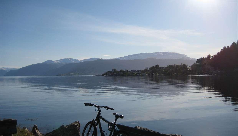 Sykkel ved Fjord Balestrand