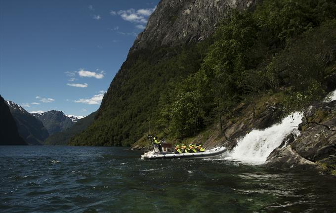 Goatfarm hike with Basic Fjord Safari