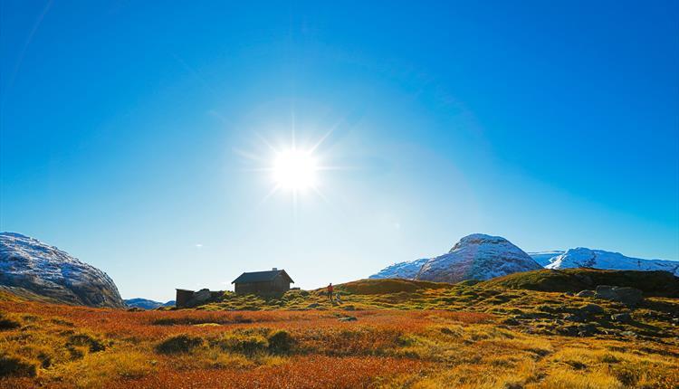 Stølsheimen Nature Preserve