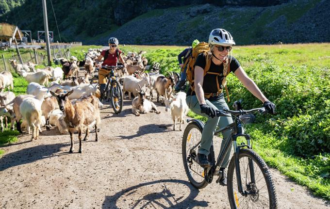 Bike Flåmsdalen