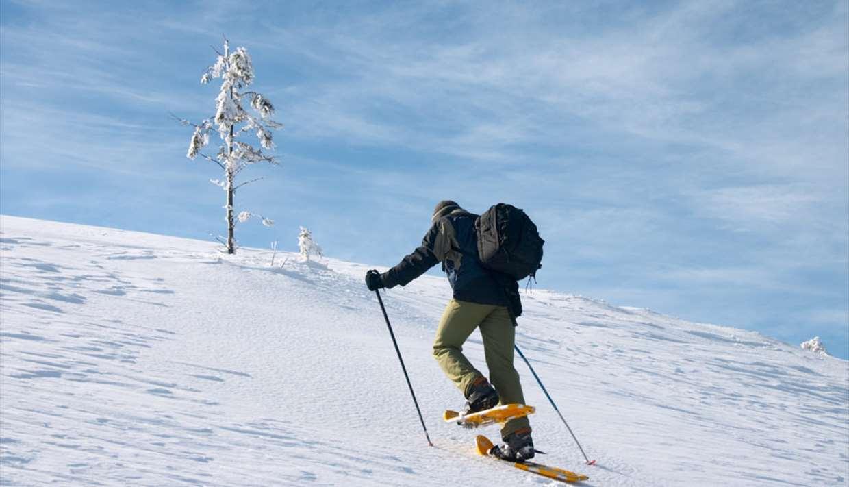 Snow Shoe Hiking Årdal