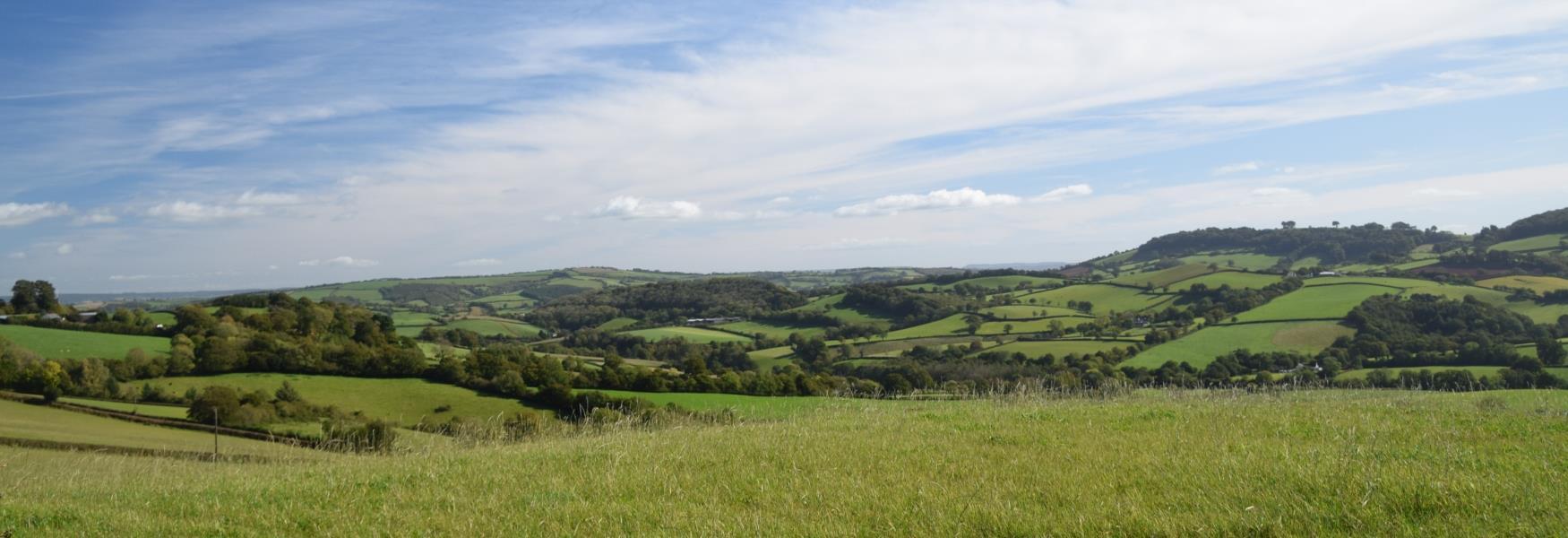 Tiverton Countryside