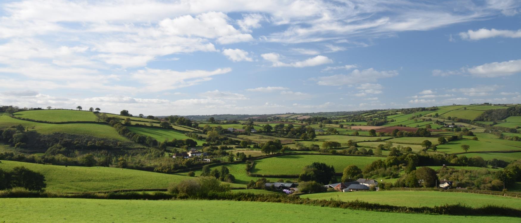 Countryside around Crediton