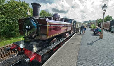 South Devon Railway train