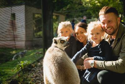 Family in Lemur Wood