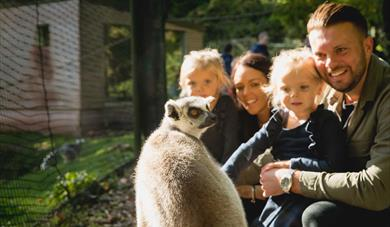 Family in Lemur Wood