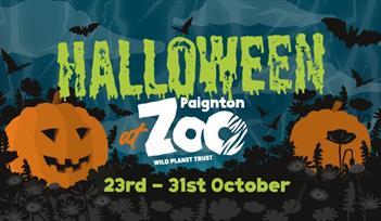 Halloween at Paignton Zoo