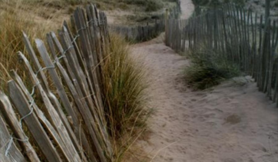 'Path through sand dunes at Bantham Beach'. Photographer Iain Pointer, Devon.