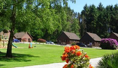 Alpine Park Cottages