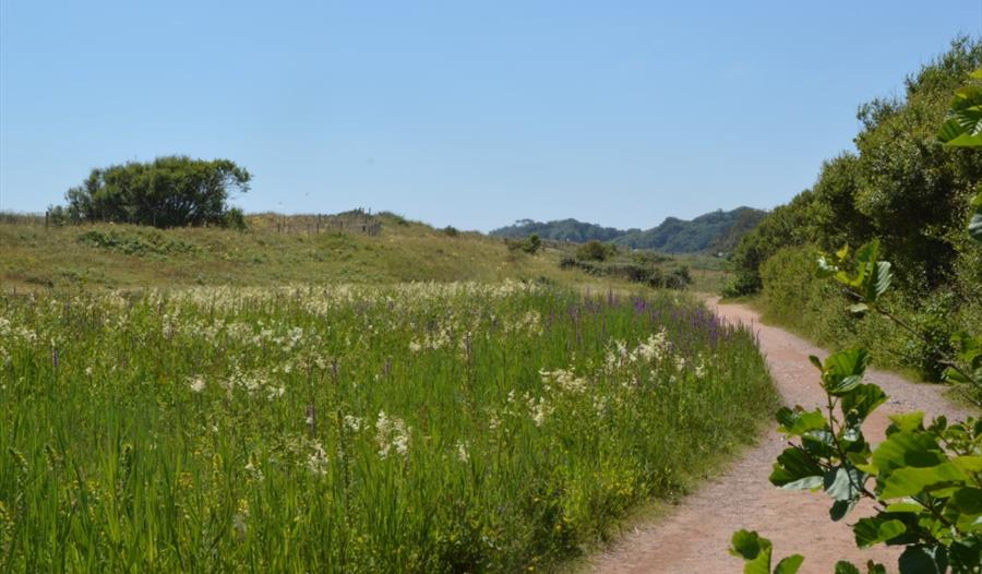 Dawlish Warren Nature Reserve pathway