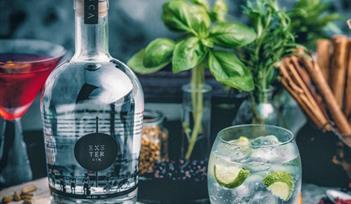 Exeter Gin