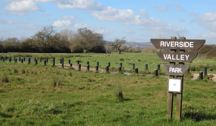 Ludwell Valley Park Trail