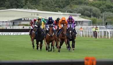 Racing at Newton Abbot Racecourse
