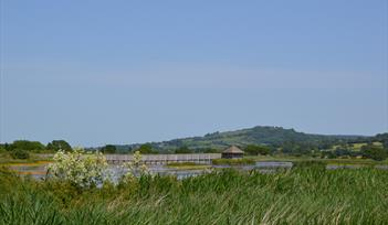 Seaton Wetlands