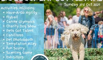 THE BIG DOGGY DAY OUT FESTIVAL
