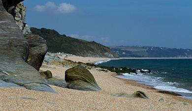Beesands Beach