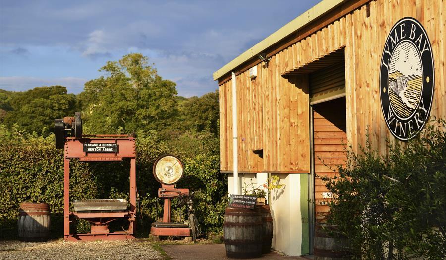 Lyme Bay Winery