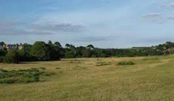 The Maer Local Nature Reserve