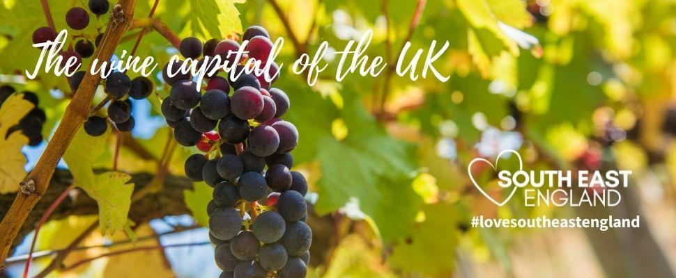 Stanlake Park Wine Estate