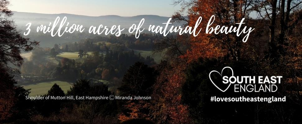 Discover the South East's 3 million acres of natural beauty, including two National Parks and nine Areas of Outstanding Natural Beauty and the beautiful county of Hampshire.